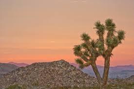 image of California