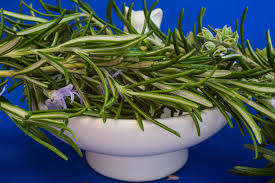 white dish holding various cut herbs