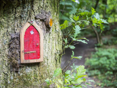red fairy door in a tree