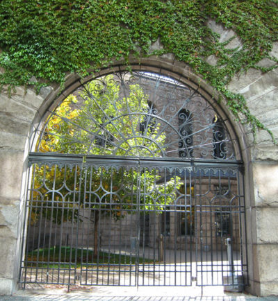 iron wrought gate with vines creeping above in the arch