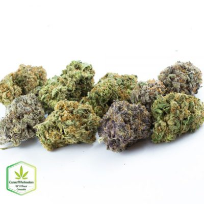 sample pack of cannabis from CannaWholesalers