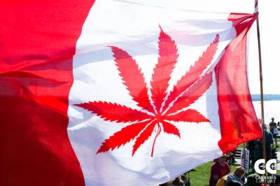 cannabis canadian flag